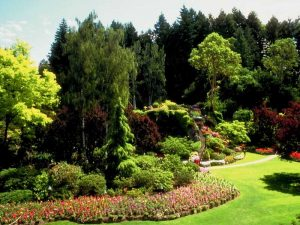 How to Choose a Landscaper for Your Home